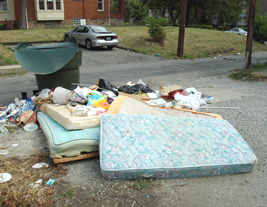 Report Illegal Dumping